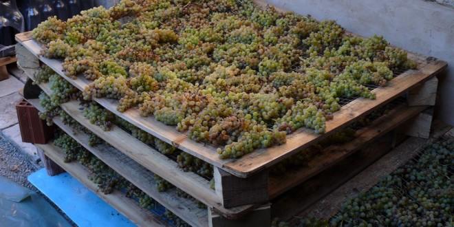 Co je to slámové víno?