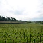 Hlavní vinařské regiony Francie