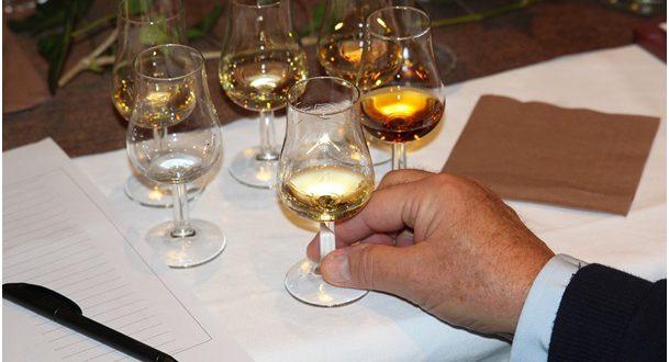 Jak degustovat víno – II. díl