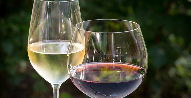Jak degustovat víno – IV. díl