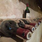 Jak na správné skladování vína