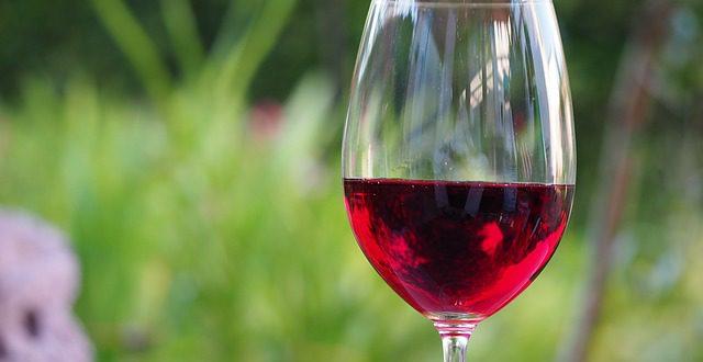 Seznamte se s víny odrůdy Zweigeltrebe