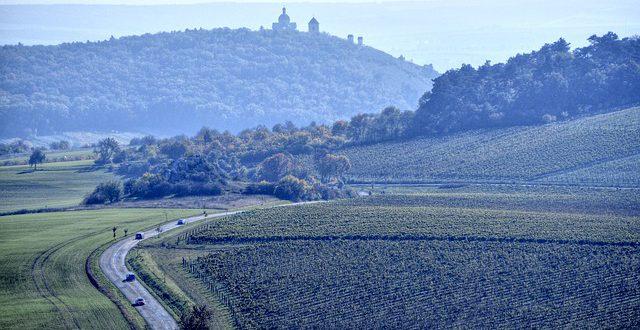 Nejstarší česká vinařská oblast