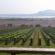 DOBRÉ VÍNO – Návštěva  ve vinařství Sonberk