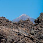 Vinařské oblasti Tenerife