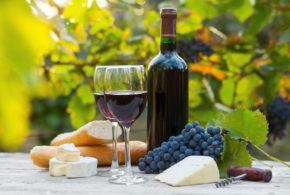 Víno a čeští panovníci
